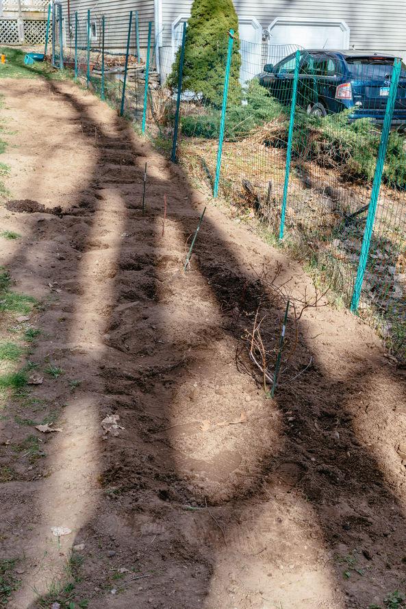 gardening-33